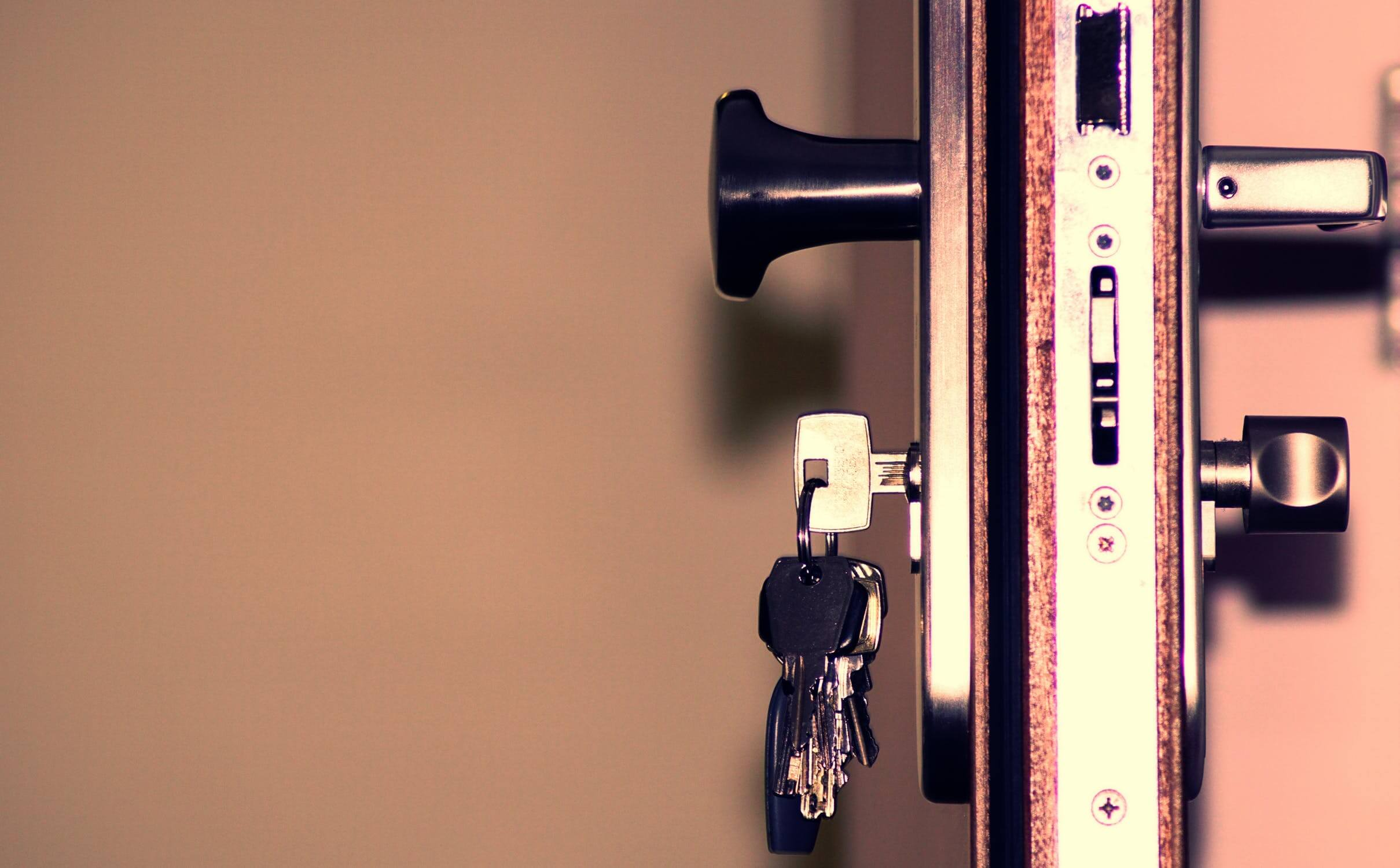 Блиндирани врати - сигурност за Вашия дом